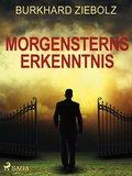 Morgensterns Erkenntnis - Kriminalroman aus Niedersachsen (eBook, ePUB)