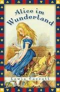 Alice im Wunderland - Neuübersetzung (eBook, ePUB)