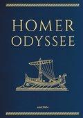 Odyssee (eBook, ePUB)