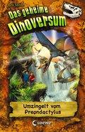 Das geheime Dinoversum 17 - Umzingelt vom Preondactylus (eBook, )