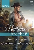 Bianca Herzensbrecher Band 6 (eBook, ePUB)