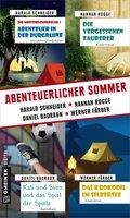 Abenteuerlicher Sommer (eBook, ePUB)