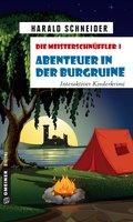 Die Meisterschnüffler I - Abenteuer in der Burgruine (eBook, ePUB)