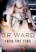 Into the Fire (eBook, ePUB)