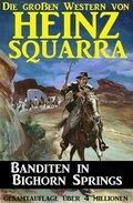 Banditen in Bighorn Springs (eBook, )