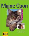 Maine Coon: Robuste Naturschönheit