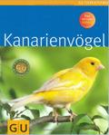 Kanarienvögel glücklich & gesund