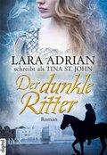 Der dunkle Ritter (eBook, ePUB)