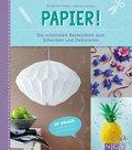 Papier (eBook, ePUB)