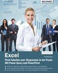 Excel Pivot-Tabellen und -Diagramme in der Praxis: Mit Power Query und PowerPivot (eBook, )