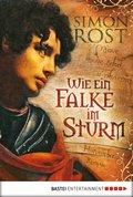 Wie ein Falke im Sturm (eBook, ePUB)