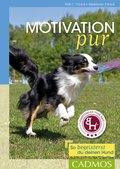Motivation pur (eBook, ePUB)