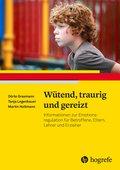 Wütend, traurig und gereizt (eBook, PDF)