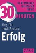 30 Minuten Erfolg (eBook, PDF)