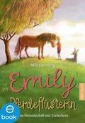 Emily Pferdeflüsterin (eBook, ePUB)