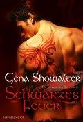 Schwarzes Feuer (eBook, ePUB)