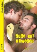 Bulle auf Abwegen (eBook, ePUB)