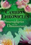 Cambion Chronicles - Smaragdgrün wie die Dämmerung (eBook, ePUB)