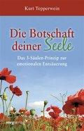 Die Botschaft deiner Seele (eBook, PDF)