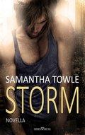 Storm (eBook, )