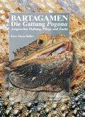 Bartagamen - Die Gattung Pogona (eBook, ePUB)