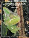 Chamaeleo calyptratus (eBook, ePUB)