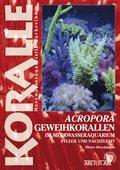 Acropora-Geweihkorallen im Meerwasseraquarium (eBook, ePUB)