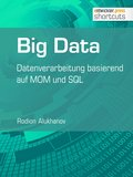 Big Data (eBook, )