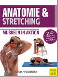 Anatomie & Stretching