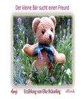 Der kleine Bär sucht einen Freund (eBook, PDF)