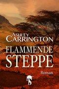 Flammende Steppe (eBook, ePUB)