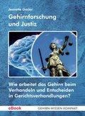Gehirnforschung und Justiz (eBook, ePUB)