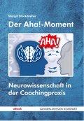 Der Aha!-Moment (eBook, ePUB)