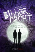 Bibbernacht (eBook, ePUB)