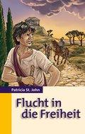 Flucht in die Freiheit (eBook, ePUB)