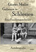 Geboren in Schlesien - Eine Familiengeschichte - Autobiografie (eBook, ePUB)