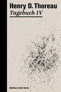 Tagebuch IV (eBook, ePUB)