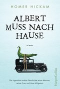 Albert muss nach Hause (eBook, ePUB)