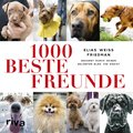 1000 beste Freunde (eBook, ePUB)