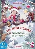 Der kleine Flohling 2 (eBook, ePUB)