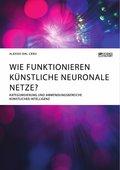 Wie funktionieren künstliche neuronale Netze? Kategorisierung und Anwendungsbereiche künstlicher Intelligenz (eBook, )