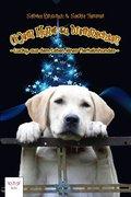 (K)ein Hund zu Weihnachten (eBook, ePUB)