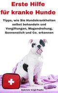 Erste Hilfe für kranke Hunde (eBook, ePUB)