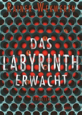 Das Labyrinth erwacht (eBook, ePUB)