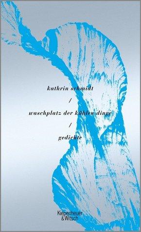 waschplatz der kühlen dinge (eBook, ePUB)