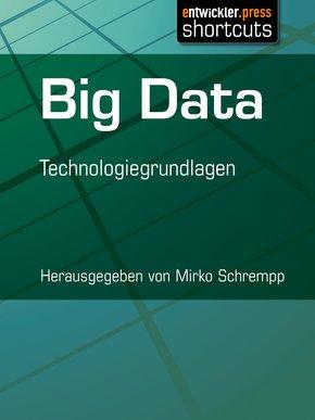 Big Data (eBook, ePUB)