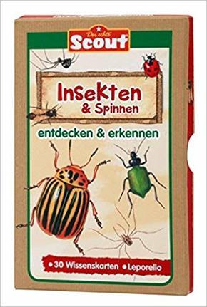 Insekten & Spinnen entdecken & erkennen - Scout Wissenskarten-Box