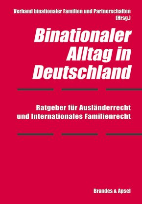 Binationaler Alltag in Deutschland (eBook, PDF)