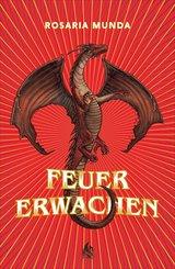 Feuererwachen (Bd. 1) (eBook, ePUB)