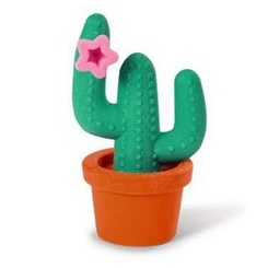 Radiergummi Kaktus